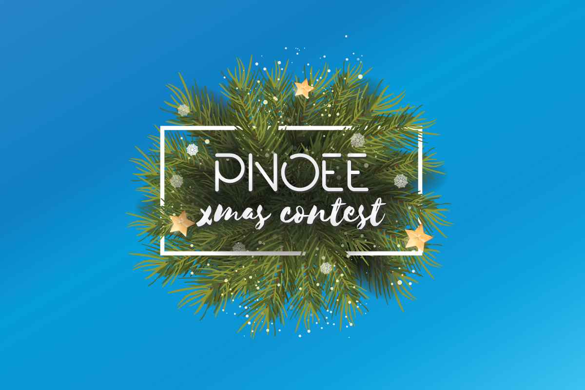 Χριστουγεννιάτικος Διαγωνισμός PNOEE : Νικητές